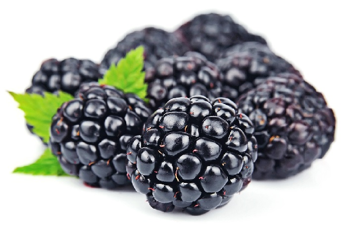 blackberry during pregnancy