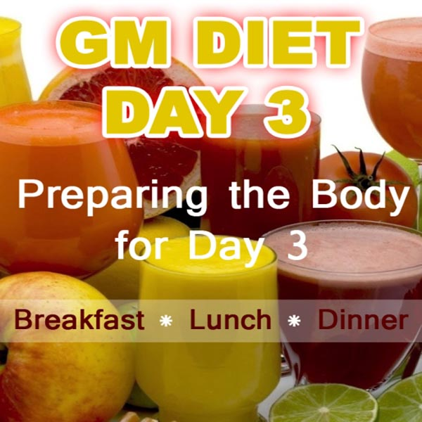 Gm Diet Day 3 - Plan And Recipes