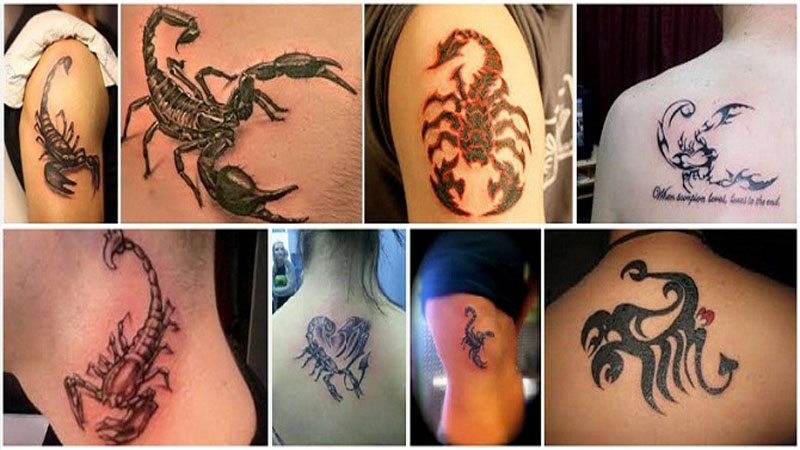 scorpion tattoo designs