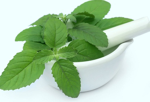 Mint Ayurvedic Treatment for Pimples