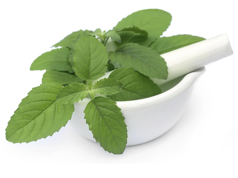 Mint Leaves Face Pack For Oily And Pimples Skin