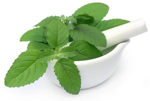 Mint Leaves & Rose Water