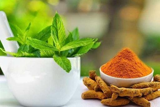 Mint Turmeric Powder
