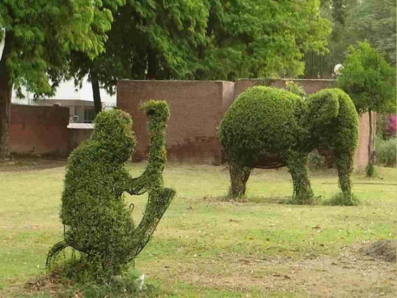 Parks in Chandigarh with Pictures