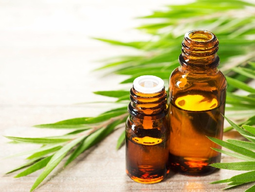 Tea Tree Oil to Reduce Cystic Acne