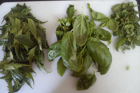 Tulsi, Neem and Mint Face Pack