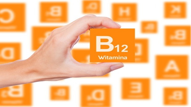 how to increase Vitamin b12