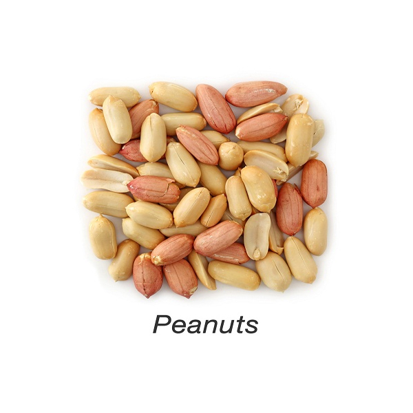 peanuts during pregnancy
