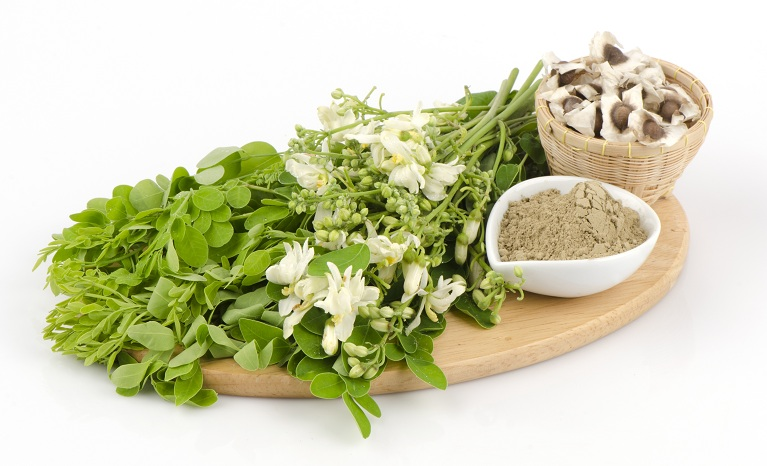 moringa powder uses