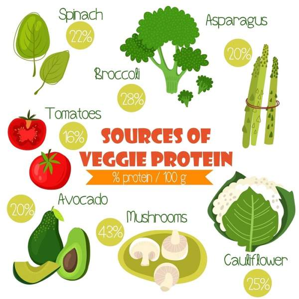 protein rich vegetables
