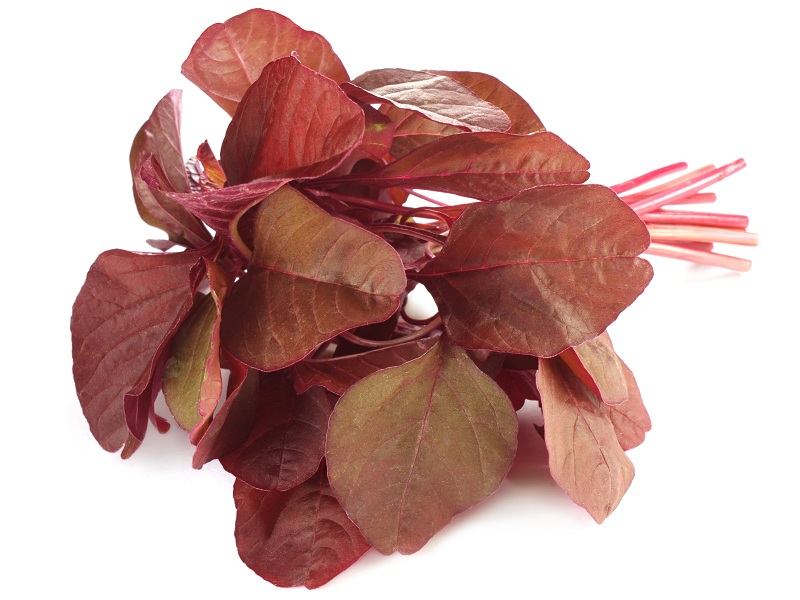 red spinach benefits