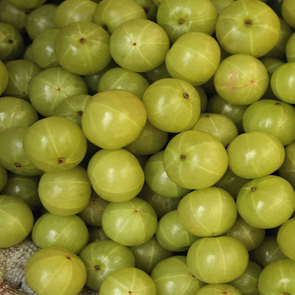How To Use (Indian Gooseberry) Amla For Diabetes?