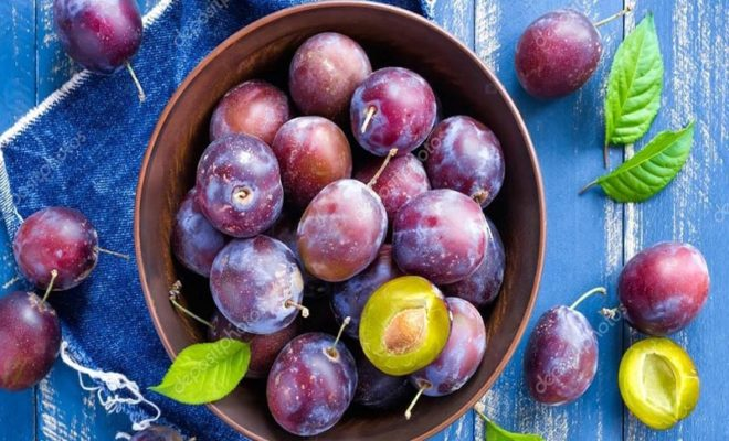 Benefits of Plum During Pregnancy