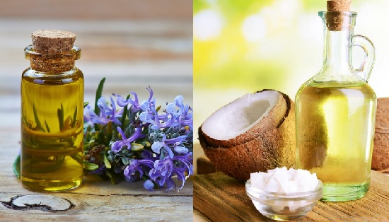 rosemary and coconut oil for dandruff
