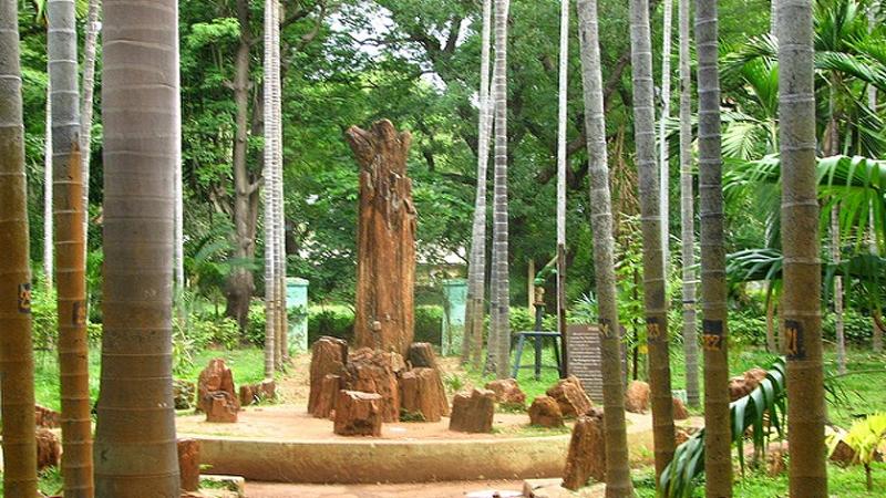 Parks in Pondicherry