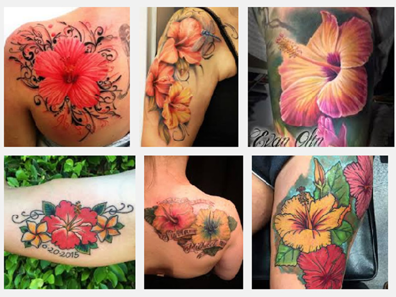 Hibiscus Tattoo Designs