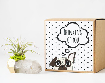 Home Adornment Thinking of You Gift