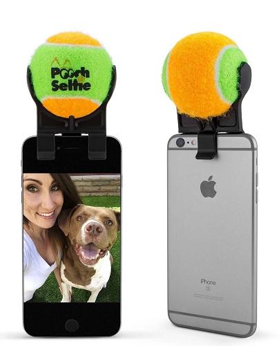 Pet Selfie Stand