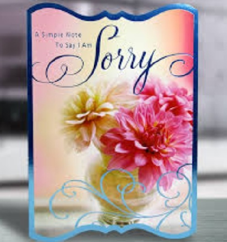 9 best im sorry gifts for your girlfriend or boyfriend styles at life sorry card gifts m4hsunfo