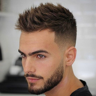 Tapered and Short Beard
