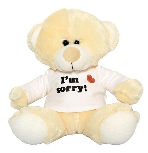 Teddy Bear Sorry Gifts