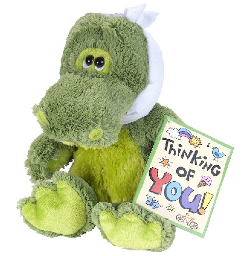 Thinking of You Soft Toy Gift