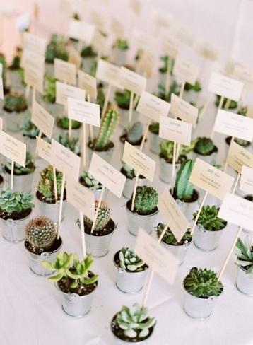 Wedding Plants