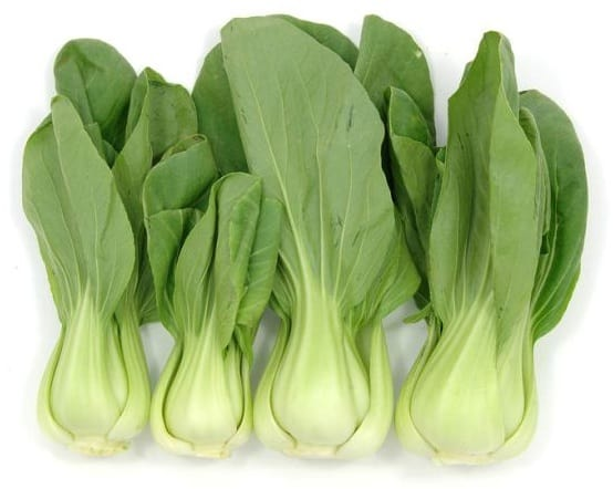 Bok Choy Vegetable to Grow Height