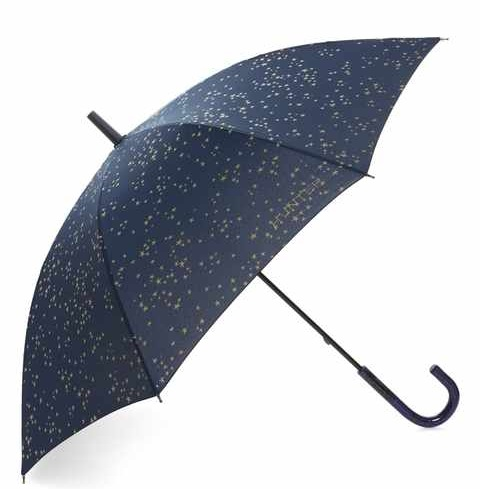 Constellation Print Umbrella