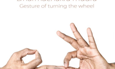 what is dharmachakra mudra benefits and steps to perform
