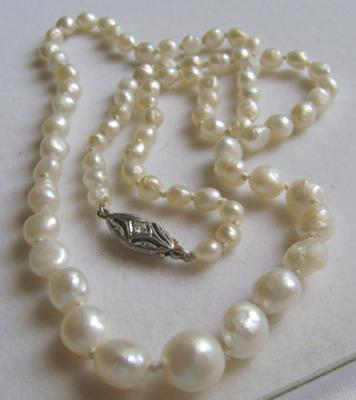 Freshwater Natural Pearls Necklace