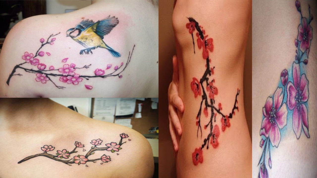 14 Best Cherry Blossom Tattoo Designs With Meanings Styles