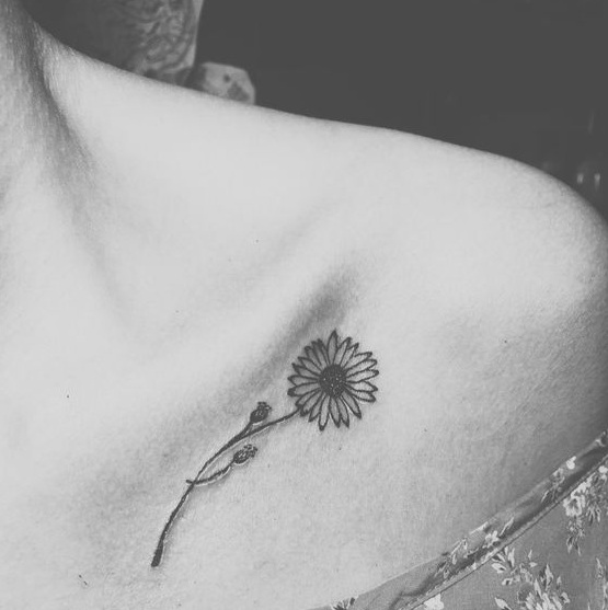 Top 12 Daisy Tattoo Designs With Specifications Styles At Life