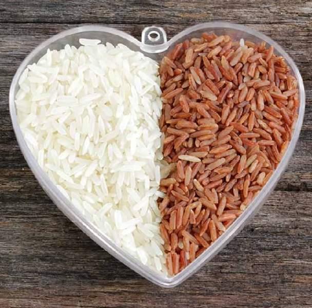 best zinc foods