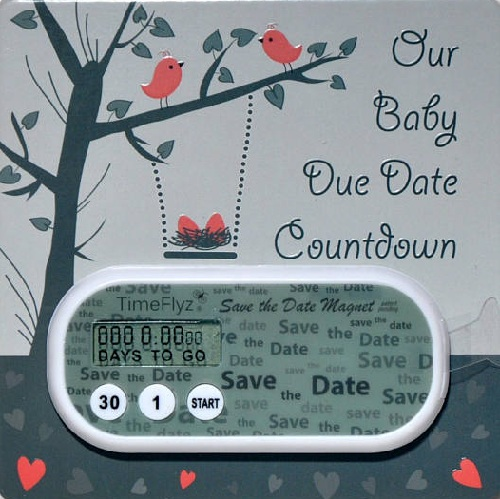 Expecting Baby Countdown Clocks