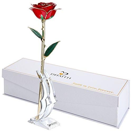 Gold Dipped Fresh Cut Pearl Rose