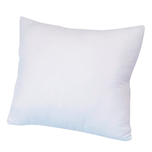 Goose Down Euro Pillows