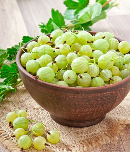 Indian Gooseberry for Bedwetting