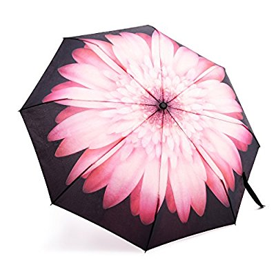 Ladies Floral Windproof Umbrellas