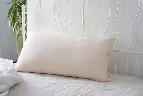 Standard Cotton Pillow