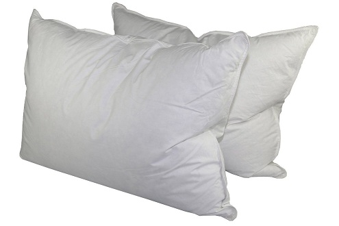 White Goose Feather Pillows