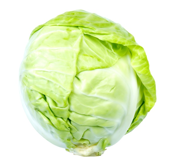 uses of cabbage