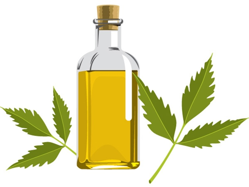 How to Use Neem Oil for Dandruff Curing