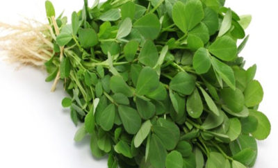 Amazing Fenugreek Leaves Benefits & It's Nutrition Facts