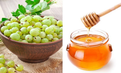 Health Benefits Of Amla and Honey – You Should Know