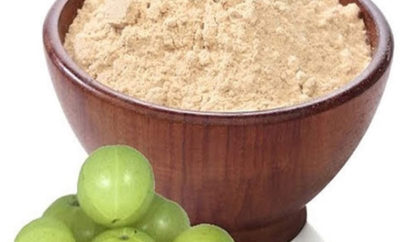 how to make amla powder gooseberry powder at home