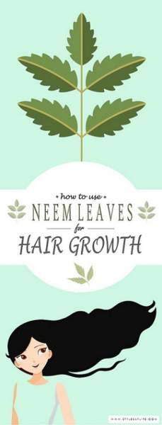 Neem Leaves For Hair Growth
