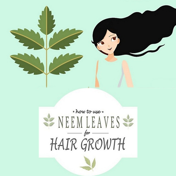 How to Use Neem Leaves for Hair Growth and Strong? | Styles