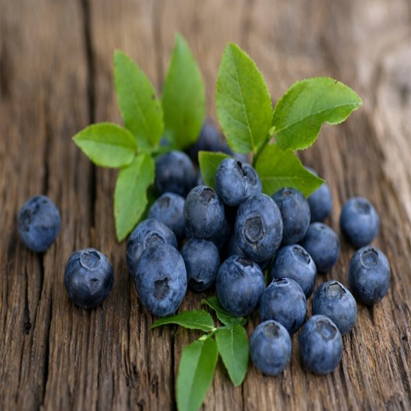 Best Bilberry Benefits for Skin, Hair and Health