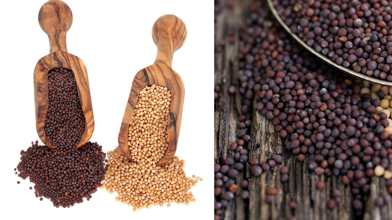 Benefits Of Mustard Seeds 17 Impressive List With Nutrition Facts